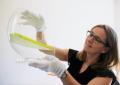 Raphaëlle CALLET HARLOR PLASTIC Adjointe de direction